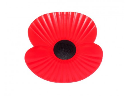 Surrey Prepares for Poppy Appeal
