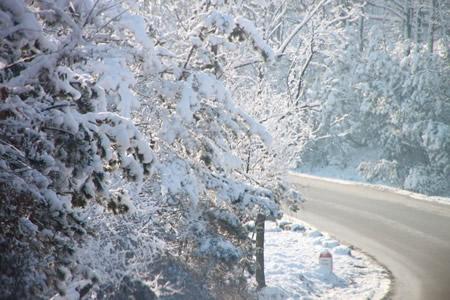 surrey-prepares-roads-for-winter-2m0